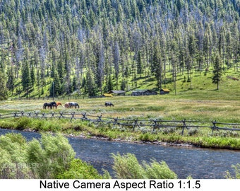 Horse Pasture: Landscape art photography prints for home or office wall decor.