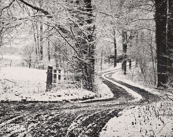 Winter Trail in a German Forest, Winding Snow Covered Road in Germany, Deutschland Fotos, Germany Photography, Snow Covered Trail, Wall Art