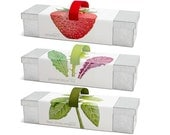 Window Box Grow Kits – Indoor Garden – Strawberries – Lettuce – Culinary Herb Mix – Basil – Chives – Oregano - Culinary Gardening - Foodies