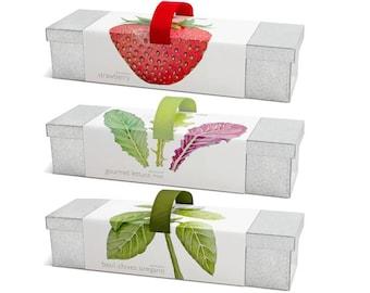 Window Box Garden Kits – Indoor Garden – Strawberries – Lettuce – Mother's Day – Basil – Chives – Oregano - Herbs - DIY Garden –Hostess Gift