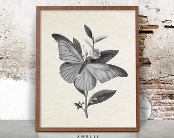 French Country Farmhouse Decor, Butterfly Print, Country Cottage Wall Art, Shabby Chic, Black and White, Printable Instant Download