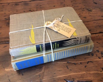 Vintage 1930s / 1940s Books For Your Library - Point of No Return & Confidential (A527)
