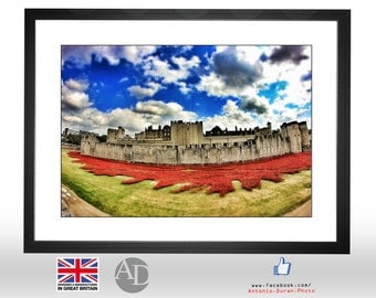 Tower of London, Poppies, Summer, Sunny, London UK, Photography, Picture