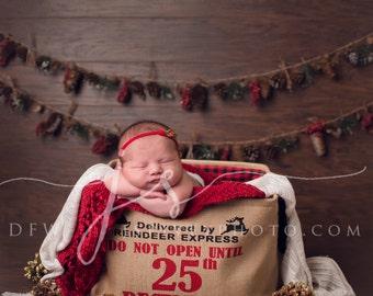 Newborn Photography Digital Prop Background