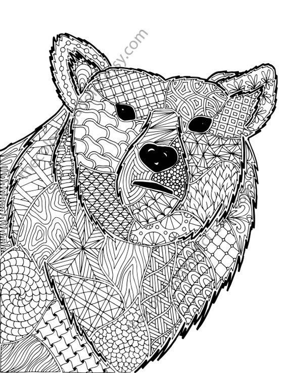 zentangle bear coloring sheet animal coloring zentangle