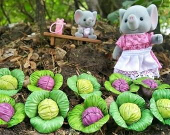 cabbage miniature 1 set 5 pcs.