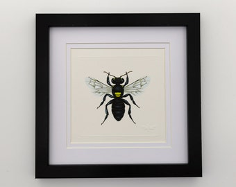 Common Masked Bee Unframed Miniature Print x 1