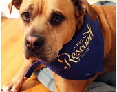 Dog Bandanna - Who Rescue...