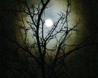 Moon series- Moondance