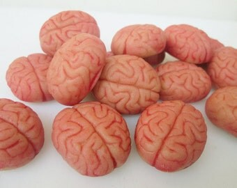 marzipan brains 16 fondant brain brain cupcake ideas zombie brain cupcake