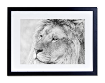 lion king frame etsy. Black Bedroom Furniture Sets. Home Design Ideas