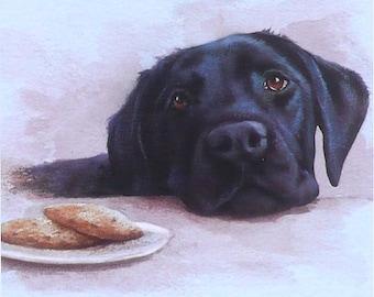 Black Labrador: Snacktime