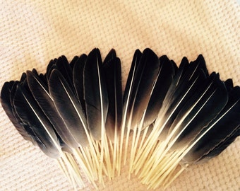Lovely  Grey Goose Wing Feathers