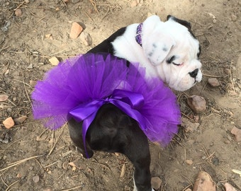 Purple Tutu For Pets/Purple Tutu For Bulldogs/Bulldog Tutu