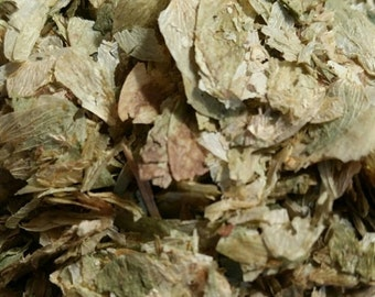 Dried Hops ~ Organic Herb for Witches