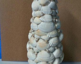 """10"""" shell tree"""