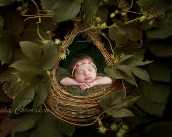 digital backdrop , background  newborn  boy or girl outdoor fairy tail forest garden nest