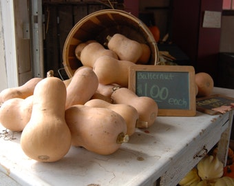 Gourds at a food stand