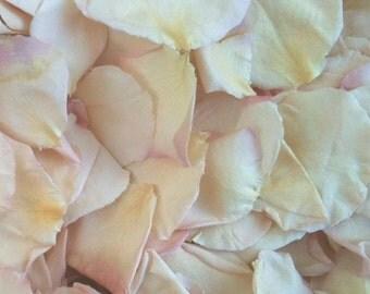Pale Pink|Blush Rose Petals. Wedding Petals. Real Rose Petals. Flower Petals. Confetti. Flower Confetti  50 CUPS. Aisle Petals. USA!