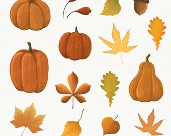 Fall Clipart Set, fall clip art images, fall vector, autumn clipart, autumn digital art, commercial use with Instant Download