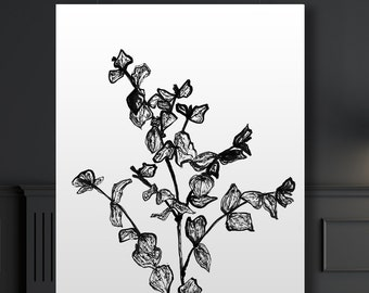Botanical Giclee Art Print of ink illustration, Eucalyptus