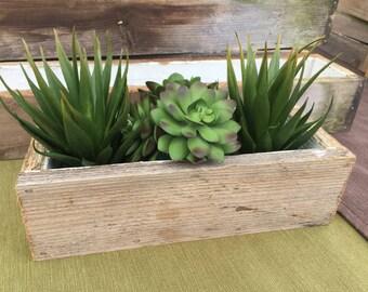 Wooden succulent box