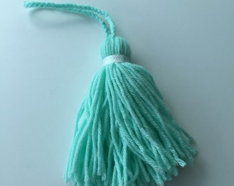 Mint Yarn Tassel