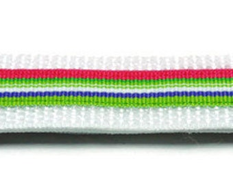 Small Lime/Pink Striped Dog Collar