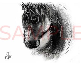 Horse - A3 print
