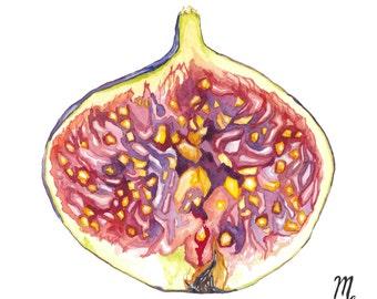 Fig Art Print | Fig Watercolor Painting | Fig Illustration | Farmhouse Kitchen | Farmhouse Decor | Kitchen Art | Food Illustration | Fig Art
