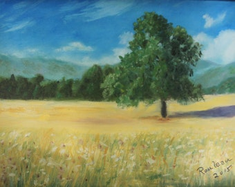 Tree in Field of Grass