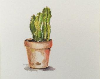 Three Cactus