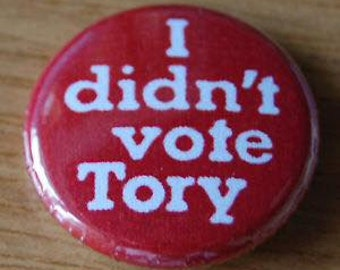 I Didn't Vote Tory 25mm Button Badge