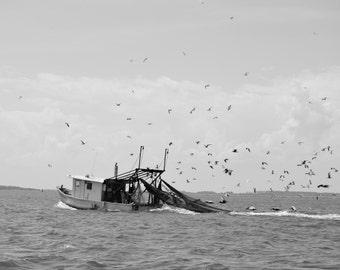 Savannah Shrimp Boat