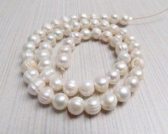Freshwater Potato pearl strand