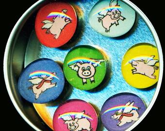 Flying Pig Magnet Set