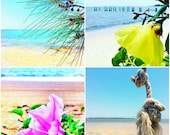Beach House Decor Photography Print Set of Four 5x5 Coastal Photos, Flower Prints, Summer Living, Surf Sand and Blue Sky, Seaside Wall Art
