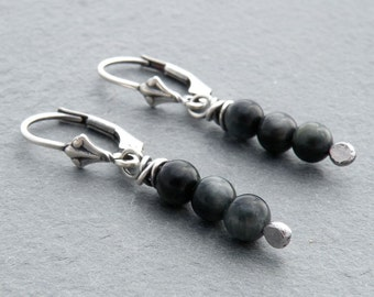 Chatoyant Black and Gray Hawk's Eye Quartz Gemstone and Sterling Silver Lever Back Dangle Earrings, #4678