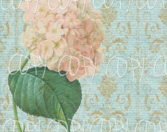 INSTANT DOWNLOAD - 12 x 12 Hydrangea Image  -  Transfer Pattern or Frameable Wall Art - Large Single Image-  Florals Flowers French