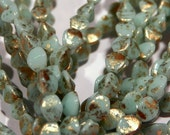 Mint Green and Gold Pinched Bi-Cone Glass Beads 5mm (30) 0017