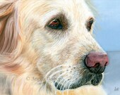 Golden Retriever Painting Print, Dog Print, Pastel, Pet, My Best Friend, Reproduction, Fine Art, Nature, Realism, 8 x 10