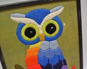 Wide eyed owl picture
