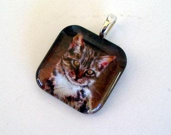 Cat Jewelry Square Pendant Feline Kitten Art Glass Silver Plated Cat Jewelry from Original Art