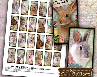 Easter Bunny Digital Collage Sheet 1x2 Domino Images for Bezel Settings, Dominoes, Pendants, Glass, Magnets, Pill Boxes, Decoupage Paper