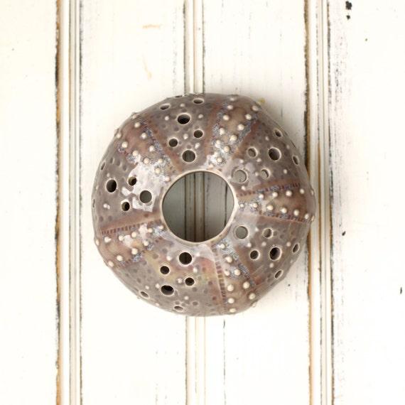 small urchin wall hanging, urchin tabletop sculpture, grey
