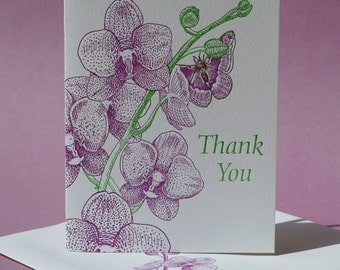 Moth Orchid Thank You Card and Blank Note Card