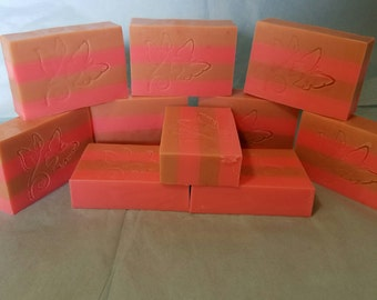 Chocolate Covered Strawberry Sudsy Soap  6 Count
