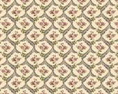 COUPON CODE SALE - Isabella, Fern, Coral, Penny Rose, Riley Blake Designs, 100% Cotton Quilt Fabric, Pink Quilting Fabric
