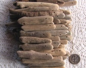34 Driftwood Sea Wood Large Beads Sticks Top Drilled 1.5mm holes Supplies (1804)