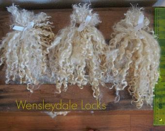 Wensleydale Long Wool Locks - unwashed, 1 oz.